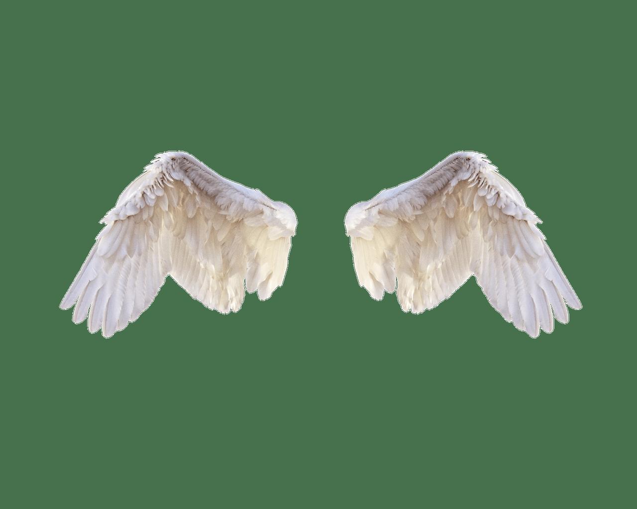Engel Selbstliebe Geistige Welt Spirit